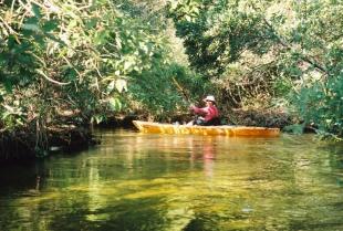 Kayaking Juniper Wayside
